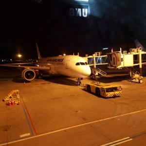 【羽田→金浦:OZ1035】数年振りにJALでソウルへ