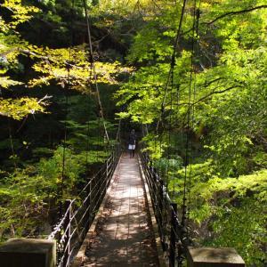 (2019.11.4)奥多摩湖を目指し、レンタサイクルで古道を行く!