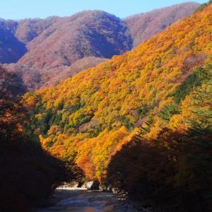 (2019.11.13)毎年恒例、日光を訪れ紅葉を楽しむ! その①
