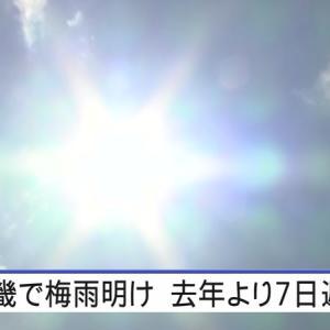 夏@Summer 好評につき!!?(  ˙ ˡ̼̮ ˙ )?