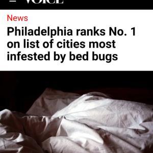 フィラデルフィアの虫