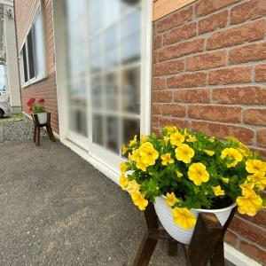 オレンジハウスの花台