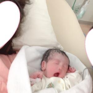産まれました!!!