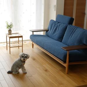 【待望】柏木工-シビルソファが我が家に届きました(*^-^*)