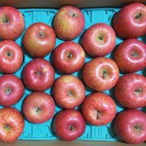 さくらんぼの郷のりんご