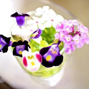 メールアドレス moa@zb3.so-net.ne.jp   よろしくお願いします 。