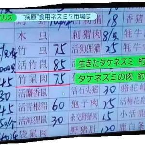 追記:感染440人死者9人新型コロナウィルス:「ひるおび」で:中国は今回の新型肺炎をSARSと同じ警戒レベルに位置付けた。乙類の法定伝染病に指定した。