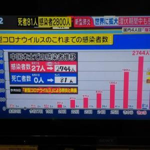 指定感染症へ日本は明日閣議で指定:中国で死者81名感染2803人: