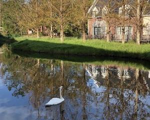 長崎★6 ~ ハウステンボス・オフィシャルホテル『Forest Villa(フォレストヴィラ)』白鳥の池