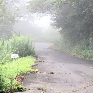 福岡県の山 グライダー山〜発心山