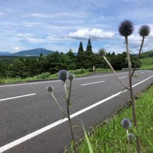 大分県 飯田高原へ