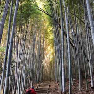 福岡県の山 清水山・女山神籠石周回へ