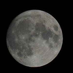 ★ Blue Moon On Saturday