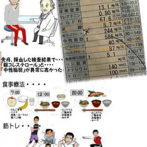 1年間の食事療法の数値結果とボサボサのウェルシュテリアのプラッキング・・・・・