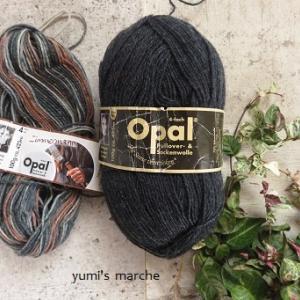 リストウォーマー Opal Handwerk&Hobby3  9644+単色5191