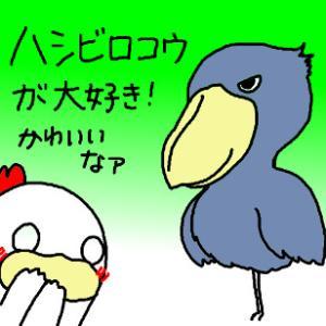 大好きな鳥