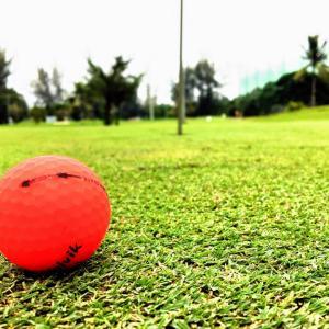 ゴルフ、そしてうな重を
