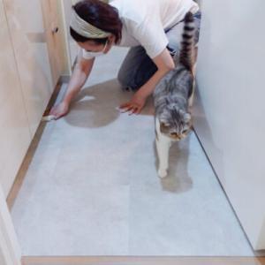 【洗面所DIY】床はクッションフロアよりフロアタイルが楽でした。接着剤不要で賃貸OK!