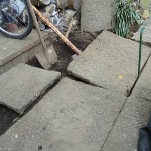庭石を隆起させる