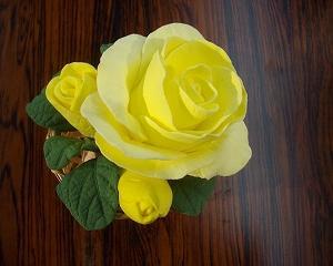 コロナ対策とクレイのバラの体験