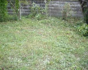 草刈り機の使い心地は良かった