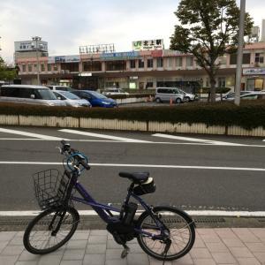 新緑の錦秋湖を電動アシスト自転車で走ってみました。