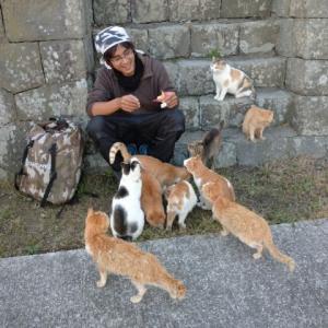 R旅107日目(10/30) 猫の聖地♪