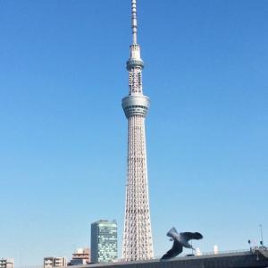 えっ? 今から200年前の浮世絵に東京スカイツリーが描かれていた?