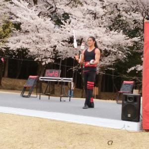 赤城南面千本桜~パフォーマンス~桑風庵~水玉模様のふんわりスリーブブラウス♪