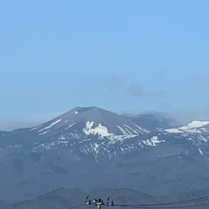 吾妻小富士の「雪うさぎ」とこの日の朝食