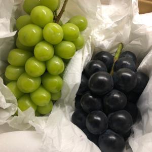宝石のような葡萄