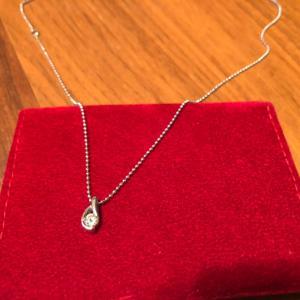 ネックレス=数珠