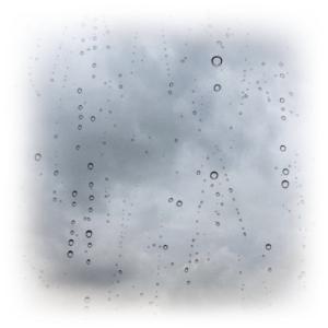 夏日の後は、冷たい雨って…(泣)