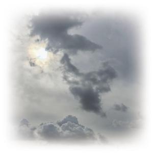 今日は、どんより曇り空。