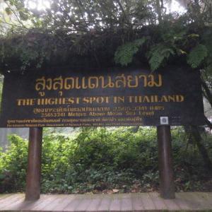 チェンマイで、ある女性が教えてくれたこと【タイの日々part382】