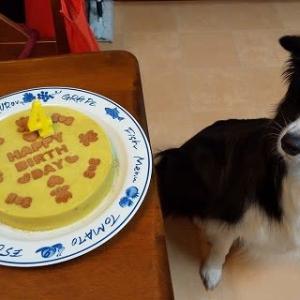 エトワール☆4歳のお誕生日