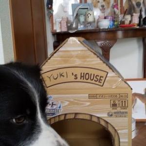 YUKI's HOUSE(笑)
