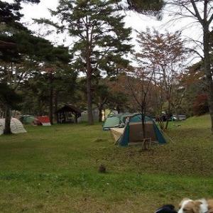 T公園キャンプ客多し