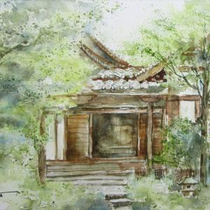 緑に包まれる普門寺
