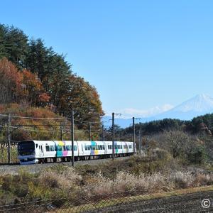 さようなら武田菱 E257系0番台