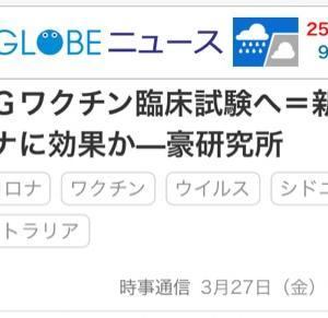 BCGが日本に奇跡を起こしている?〜データより