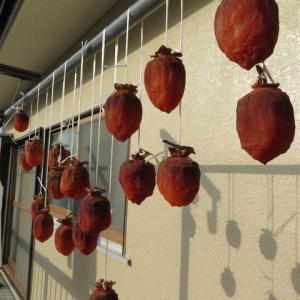 出来上がった干し柿