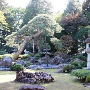 瑞楽園は秋のお出かけにぴったり!見学無料で日本庭園を堪能できる