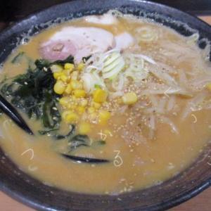 ラーメンだるまやの味噌ラーメンはコクのあるスープが特徴