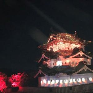 弘前城『光の桜紅葉』美しく幻想的♪11月8日まで見学できます