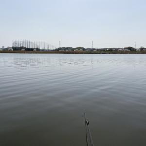 2021/03/31(水) 印旛新川