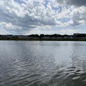 2021/04/30(木) 鹿島川