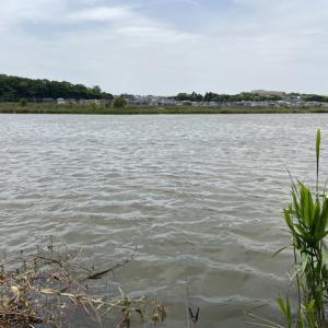 2021/05/01(土) 鹿島川