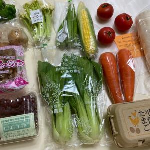 野菜の素材の味を楽しむ