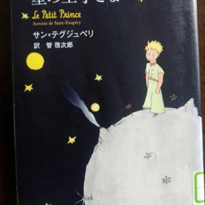 「星の王子さま」は大人向けの童話